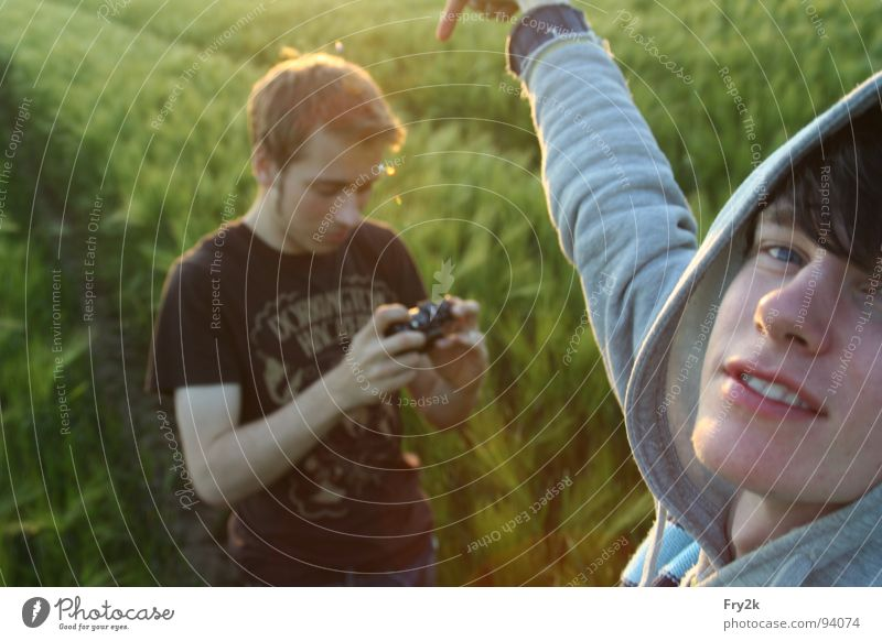 Oven croquettes Field Lemgo Man Youth (Young adults) Green Afternoon Sunset 2 Sweater Leisure and hobbies Grain Camera snapshots Evening Face Eyes Mouth