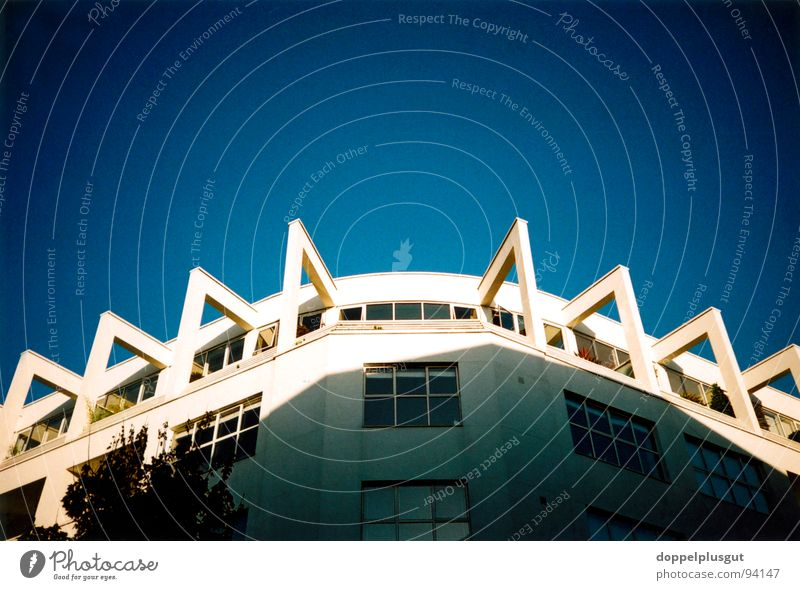 spider house House (Residential Structure) Spider 8 Loggia London Penthouse Blue Sky Shadow Lomography Happy Success