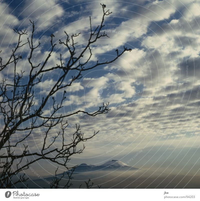 Nature Tree Blue Clouds Snow Landscape Italy Branch Volcano Naples Vesuvius