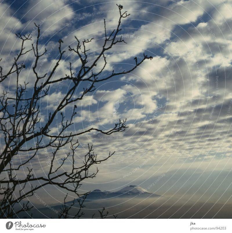 Nature Tree Blue Clouds Snow Landscape Italy Branch Volcano Naples Vesuvius