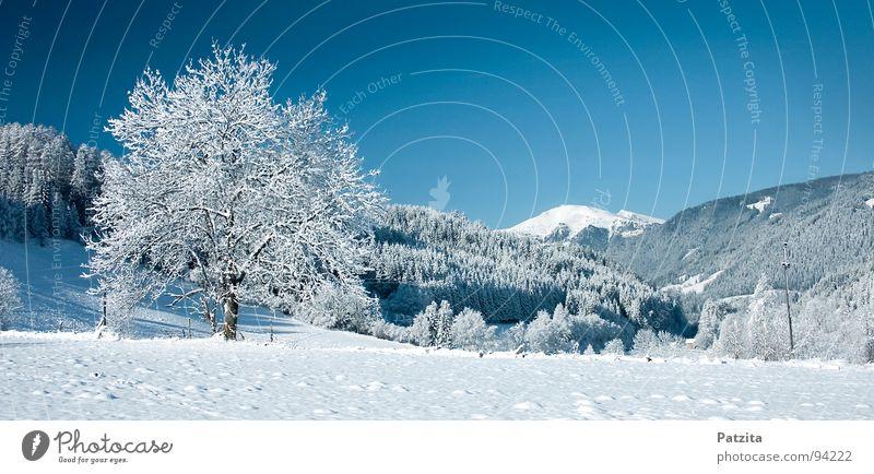 Nature Sky Tree Blue Winter Cold Snow Meadow Mountain Landscape Ice Field Large Peace Frozen Austria