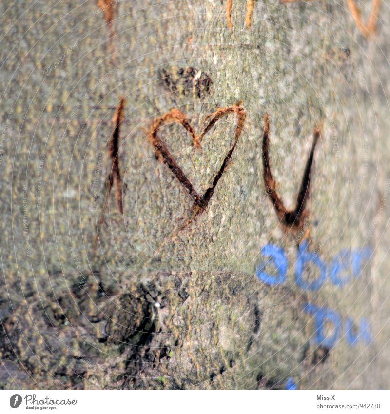 I love U Tree Wood Sign Heart Love Infatuation Romance Furrow Tree trunk Display of affection Declaration of love Memory Tree bark Colour photo Exterior shot