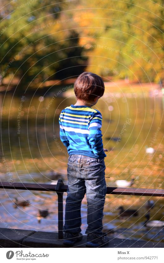 Human being Child Calm Far-off places Life Autumn Emotions Coast Playing Happy Freedom Moody Park Masculine Idyll Contentment