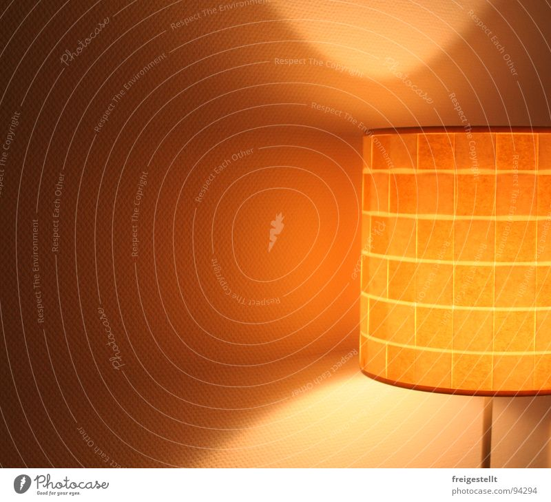 She's a dazzler. . . . Lamp Light Living room Beautiful Cozy Physics Standard lamp Ambient Harmonious Lampshade Cone of light Decoration Bright Warmth Orange