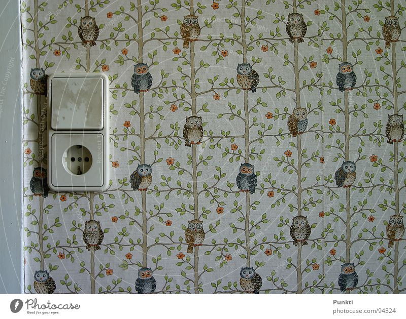 Wallpaper tea tea tea with owls Owl birds Light switch Former Children's room Socket Old Vintage