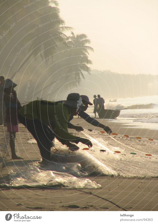 small fishing Asia Vietnam Beach Palm tree Man Morning Sunrise Work and employment Portrait format Services Fish Net