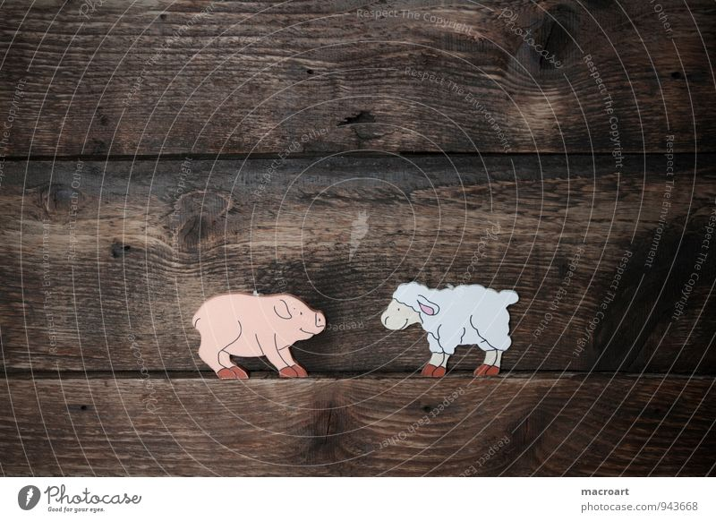 pig and sheep Swine Piglet Happy Symbols and metaphors Good luck charm Wood Background picture Animal Wood work Fat Lush Wooden board Sheep Wool Baaa Difference