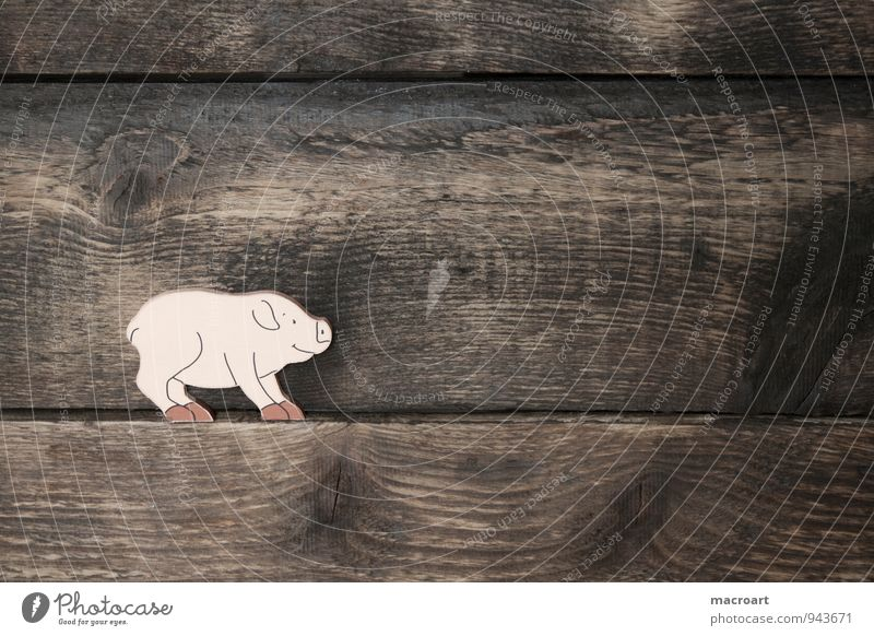 Had a rough time Swine Piglet Happy Symbols and metaphors Good luck charm Wood Background picture Animal Wood work Fat Overweight Wooden board
