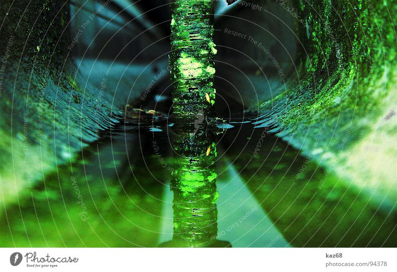 Water Green Plant House (Residential Structure) Autumn Background picture Growth Perspective Broken Round Technology End Derelict Mirror Fluid Hut