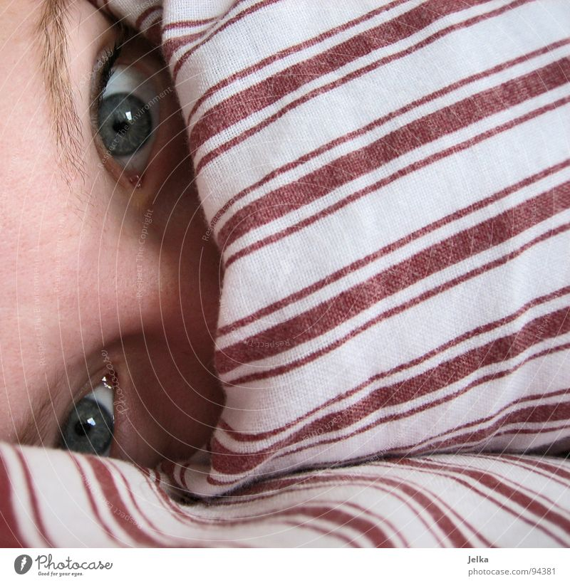 Woman Blue White Red Face Adults Eyes Nose Stripe Hide Blanket Striped Cushion Eyebrow Forehead Duvet