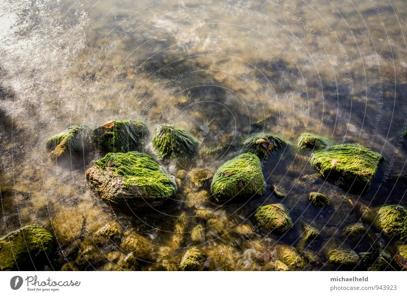 Stones in the lake Nature Water Waves Coast Lakeside Selenter Lake Schleswig-Holstein Breathe To enjoy Dream Fresh Emotions Moody Patient Calm Lovesickness