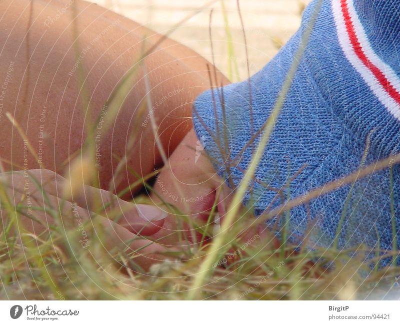 Sleeping in summer Summer Meadow Vacation & Travel Blade of grass Grass Cap Hat Lie