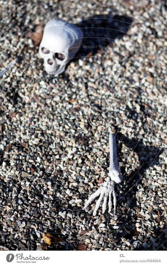 village life Hallowe'en Human being Senior citizen Head Arm Hand Fingers Death's head 1 60 years and older Ground Pebble Skeleton Stone Creepy Fear Horror