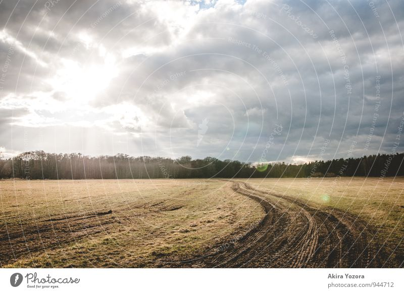 On the right track Nature Landscape Sky Clouds Sunlight Weather Tree Field Touch Illuminate Bright Natural Blue Brown Gray Green Black White Optimism Hope