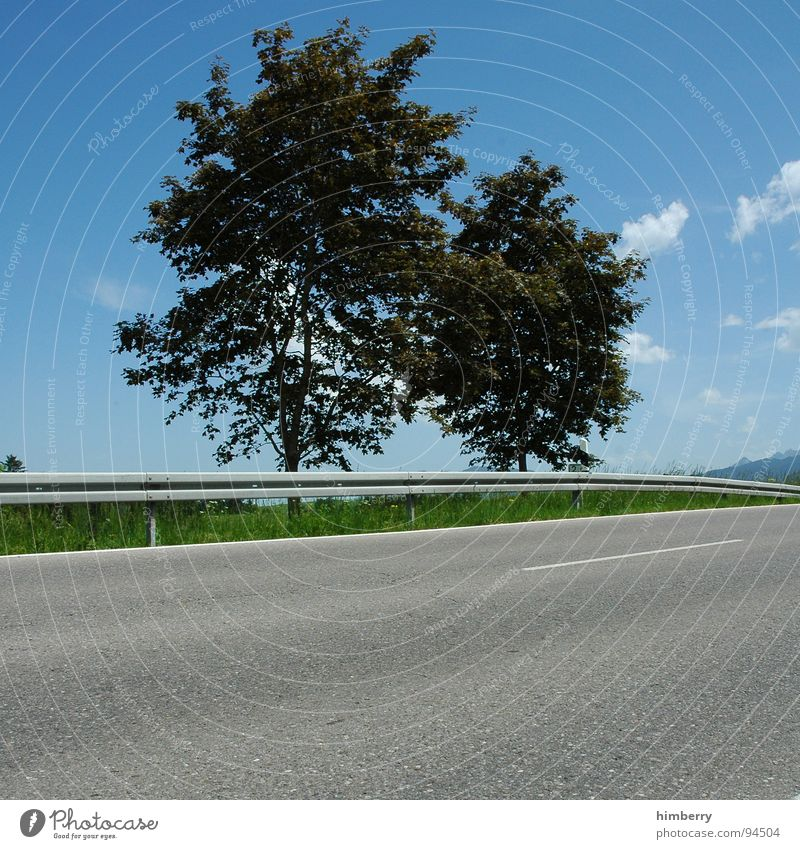 streetlife royal II Tree Clouds Asphalt Crash barrier Summer Meadow Country road Allgäu Traffic infrastructure Street Landscape Mountain Lawn
