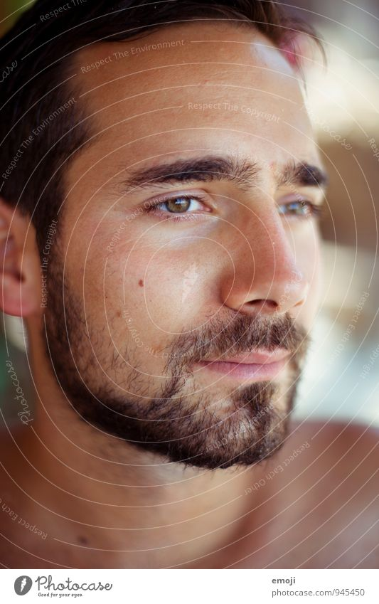 summer tan Masculine Young man Youth (Young adults) Adults Face 1 Human being 18 - 30 years Beautiful Brown Sunbathing Designer stubble Facial hair Dark-haired