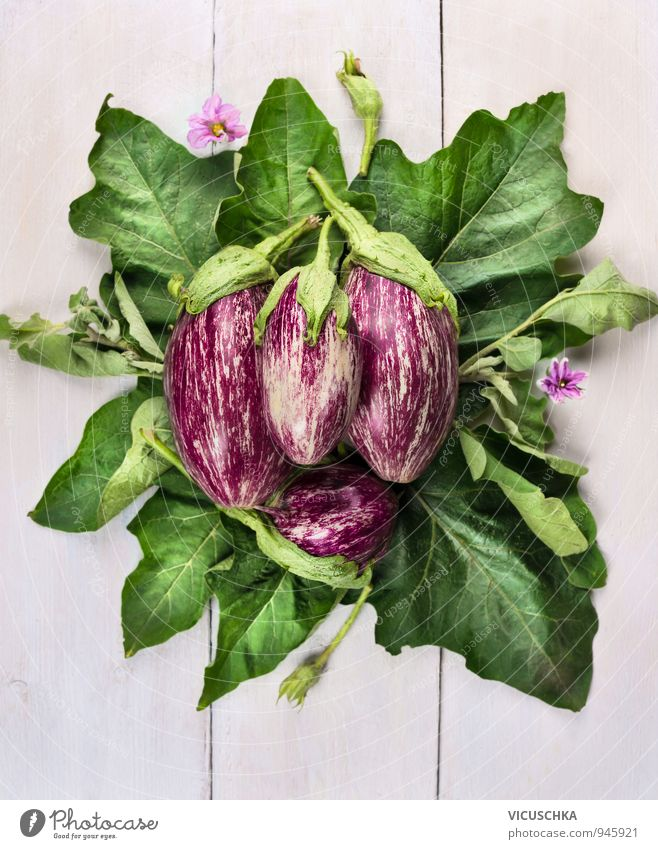 striped aubergines with leaves and blossoms Food Vegetable Healthy Eating Leisure and hobbies Summer Garden Nature Plant Good Green Violet White