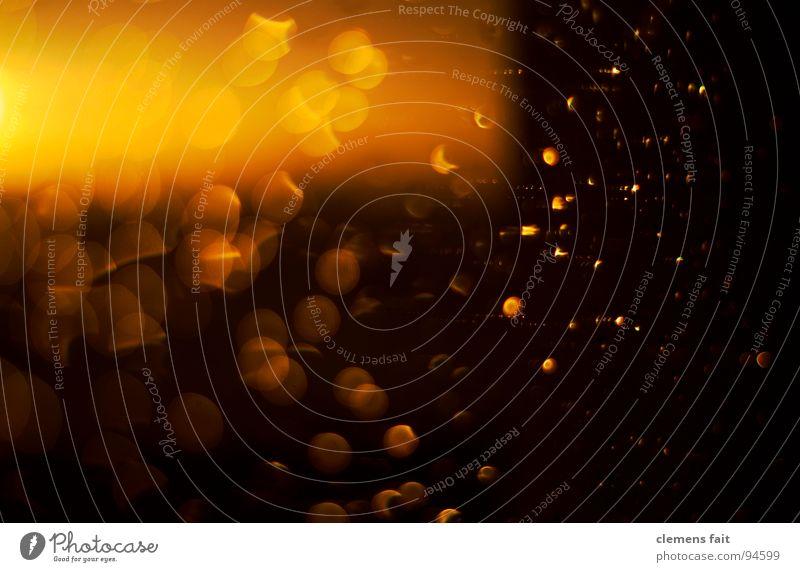 Sun Yellow Colour Warmth Rain Orange Glittering Drops of water Physics Point Window pane Sunset Indulgent Maximum aperture