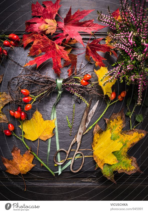 Nature Plant Green Red Leaf House (Residential Structure) Yellow Autumn Style Garden Orange Leisure and hobbies Decoration Design Gold Table