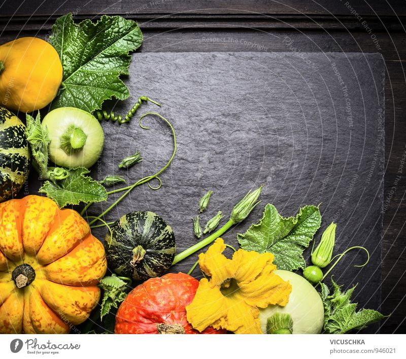 Decoration of colourful pumpkins of different varieties Food Vegetable Nutrition Banquet Organic produce Vegetarian diet Diet Design Healthy Eating