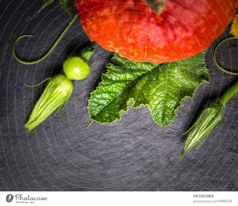 Pumpkin stems, flowers and fruits on slate Food Vegetable Nutrition Organic produce Vegetarian diet Diet Style Design Healthy Eating Leisure and hobbies Garden