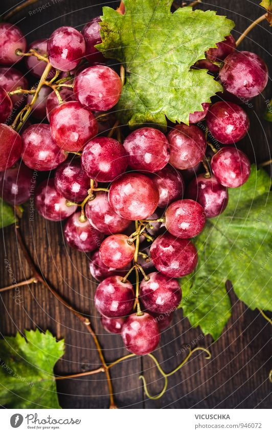 Large pink grapes with vines and leaves Food Fruit Nutrition Organic produce Diet Design Nature Garden Pink Bunch of grapes Vine Leaf Fresh Harvest Table Wood