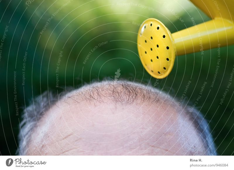 The last attempt III Beautiful Body Hair and hairstyles Skin Man Adults Male senior Head 60 years and older Senior citizen Bald or shaved head Watering can