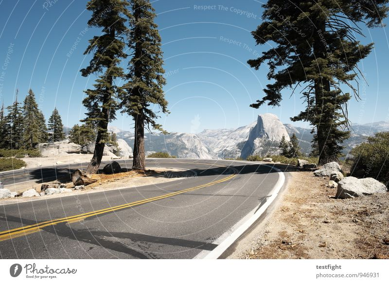 half dome Environment Nature Landscape Plant Animal Earth Sky Cloudless sky Sun Summer Beautiful weather Tree Park Forest Mountain Peak Traffic infrastructure