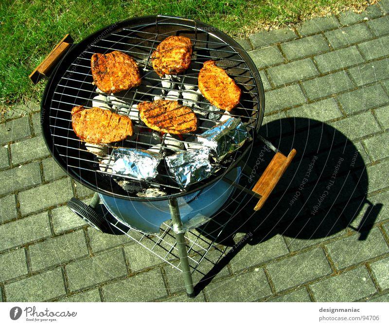 Green Summer Black Garden Gray Warmth Brown Wait Blaze 3 Cooking & Baking Lawn Physics Stripe Hot 5