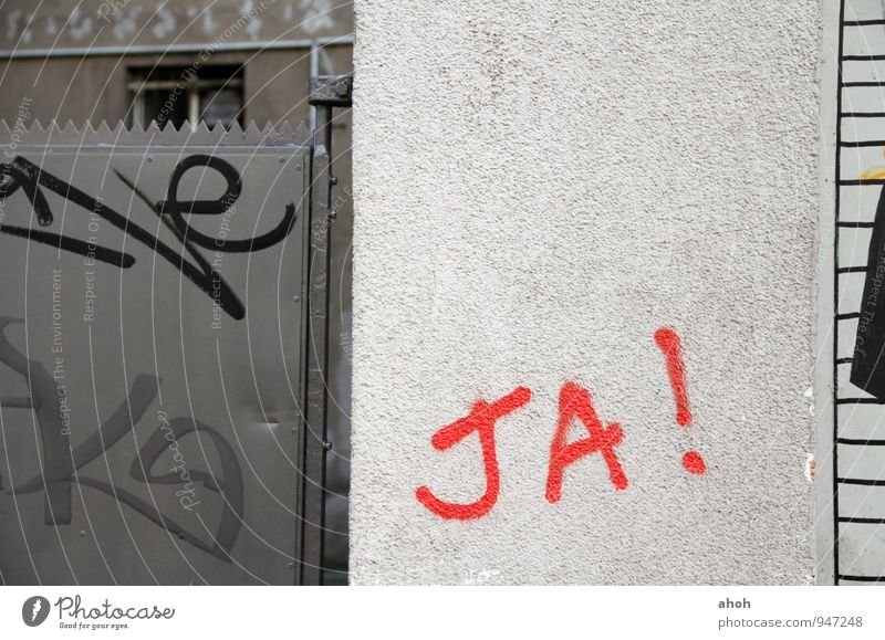 Wall graffiti concrete red paint berlin Wedding Examinations and Tests Success Team Couple Partner Youth culture Subculture Berlin Federal eagle Europe