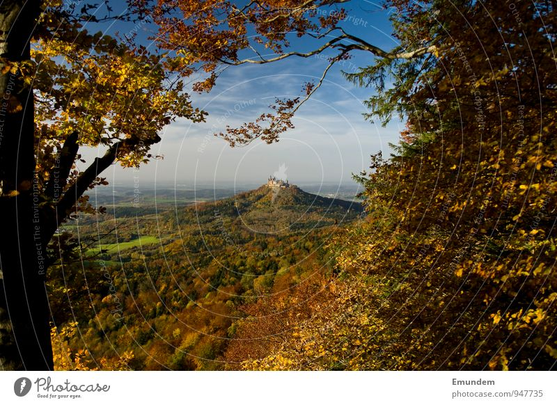 Hohenzollern I Vacation & Travel Tourism Hiking Nature Landscape Sky Sunlight Autumn Tree Forest Hill Germany Europe Deserted Castle Tourist Attraction Landmark