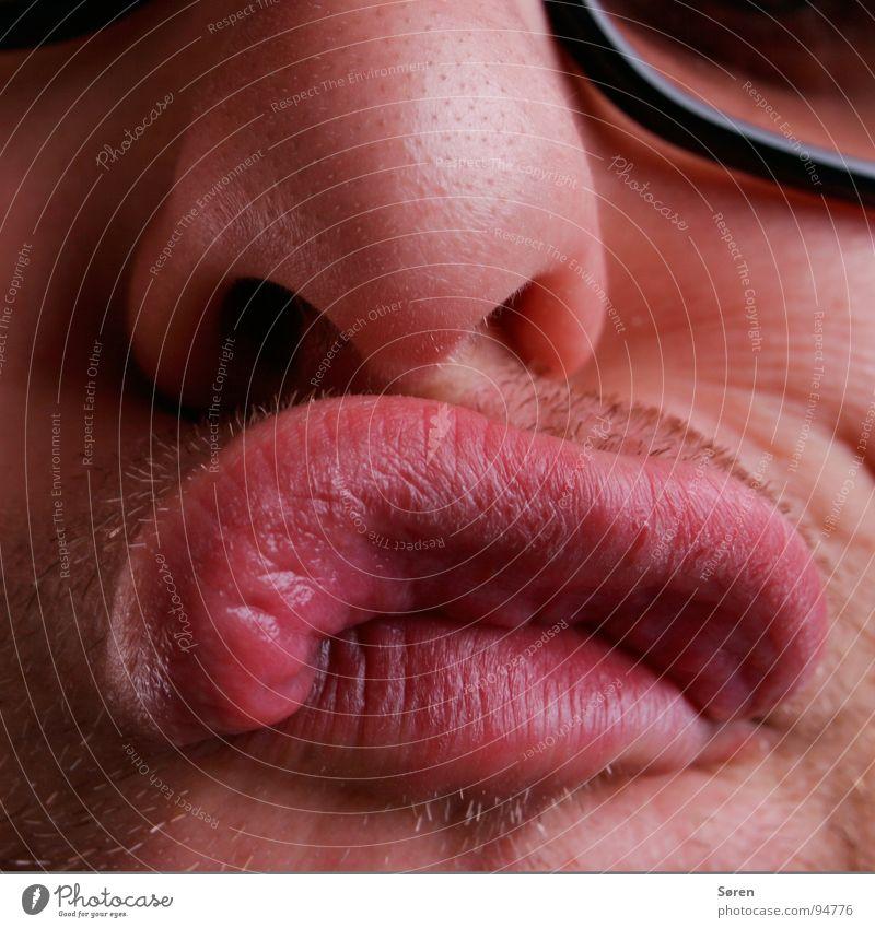 Thick lip Sulk Lips Smacker Pug nose Facial hair Grimace Face Oral Mouth Nose Designer stubble Funny Brash Distorted