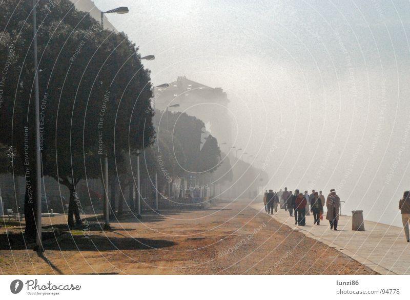 ghost town Fog Coast Ocean Beach iPhoto Original croacies Dalmacia Zadar