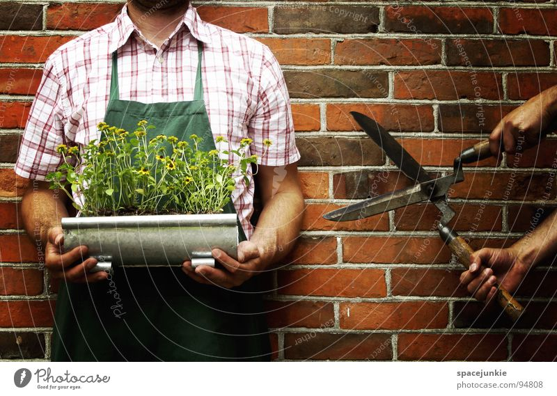 Man Nature Green Flower Summer Joy Wall (building) Blossom Funny Whimsical Cut Scissors Headless Gardener Tool Apron