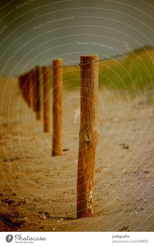 Sky Ocean Beach Colour Grass Wood Sand Line Coast Protection Border Beach dune Baltic Sea Escape Wire Pole
