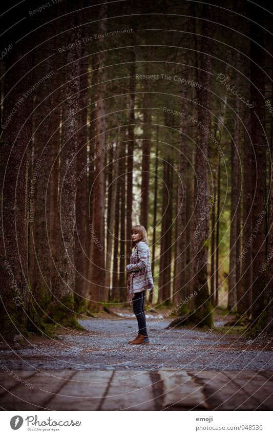 Human being Nature Youth (Young adults) Tree Young woman Loneliness 18 - 30 years Dark Forest Environment Adults Feminine Natural Individual