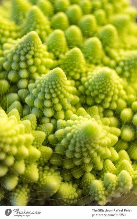 Vegetable Landscape III Food Yellow Green Romanesco Mountain Dream landscape Point Essen Edible Raw Nutrition Healthy Eating Vegan diet Vegetarian diet