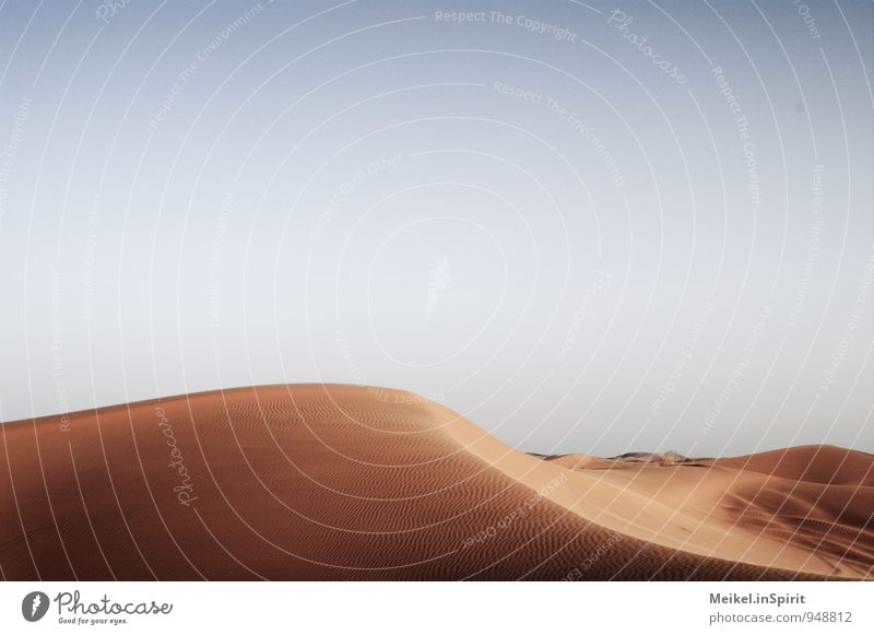 dune Landscape Sand Sky Climate Beautiful weather Desert Hot Loneliness Curve Curved Smooth Warmth Erosion Sahara Merzouga Yellow Golden yellow Colour photo