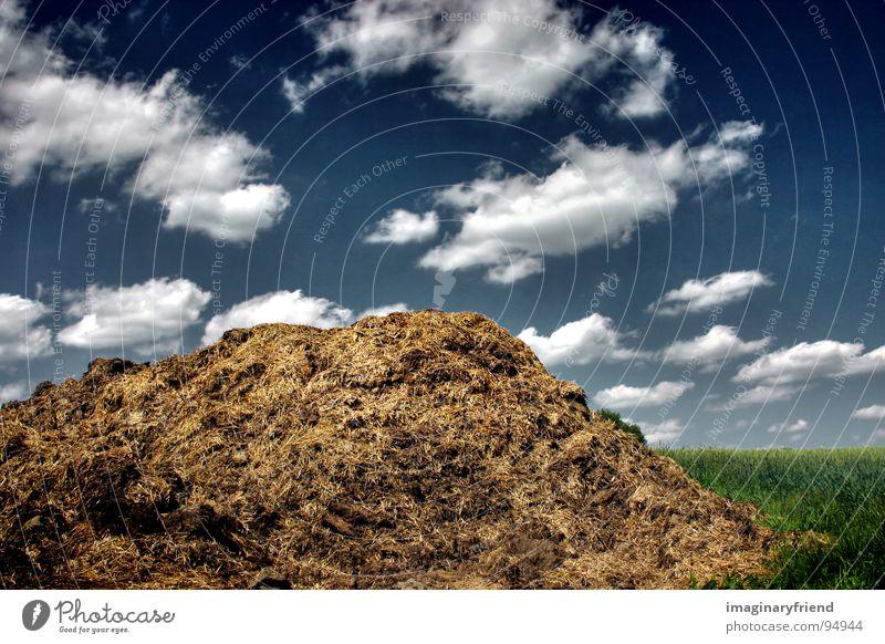 Blue Green Clouds Landscape Meadow Field Countries Manure heap