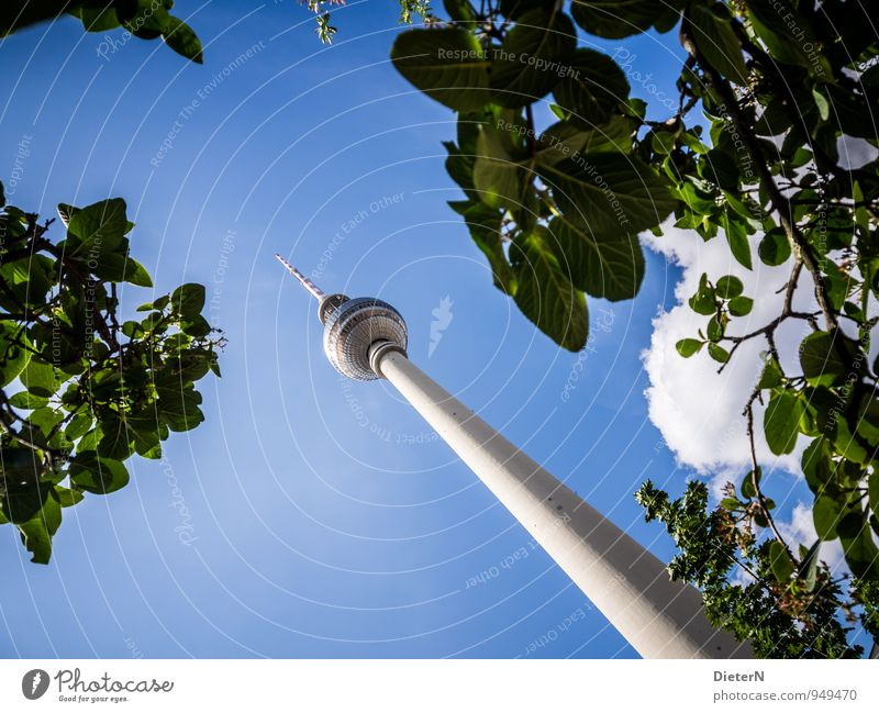 Sky Blue City Green White Tree Clouds Architecture Berlin Capital city Landmark Downtown Tourist Attraction Television tower Leaf canopy