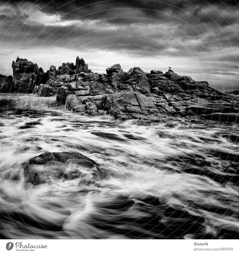 white water Nature Landscape Water Sky Clouds Weather Bad weather Wind Gale Waves Coast Ocean Gray Black White Granite Cote de Granit Rose Atlantic Ocean