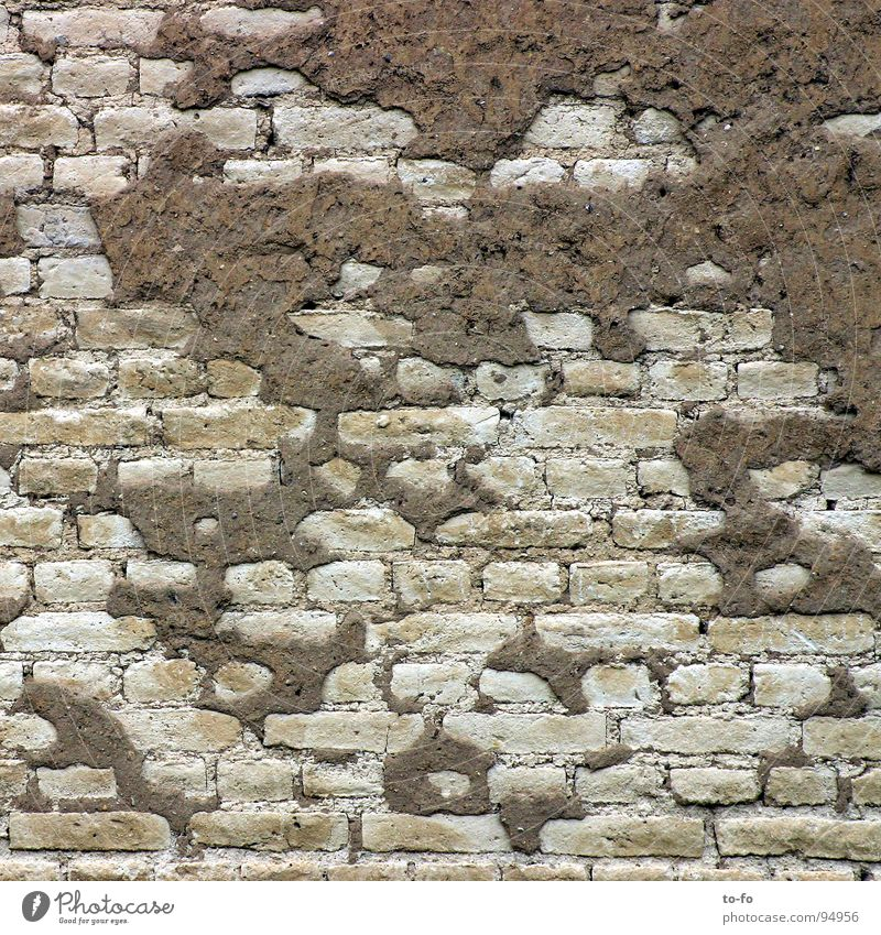 wall Wall (barrier) Wall (building) Brick Plaster Ruin Decline Redecorate Construction site Gray Craft (trade) Derelict Old Structures and shapes