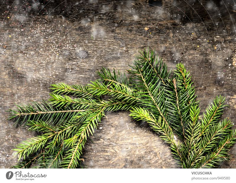 Christmas card with wreath of fir branches. Lifestyle Design Leisure and hobbies Winter Flat (apartment) Christmas & Advent Nature Tree Wood Tradition