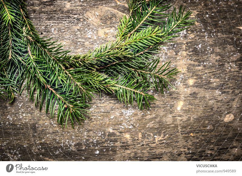Fir tree wreath. Design Christmas & Advent Nature Wall (barrier) Wall (building) Wood Ornament Retro Gray Green Tradition Background picture Horizontal
