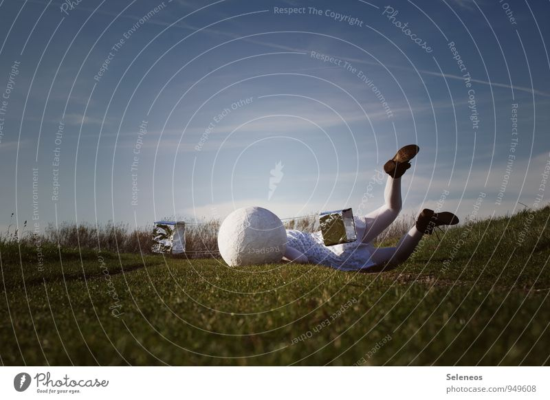 crash Human being Feminine Woman Adults 1 Sky Horizon Grass Meadow Aviation Pain Contentment To fall Sudden fall Nosedive Satellite Colour photo Exterior shot