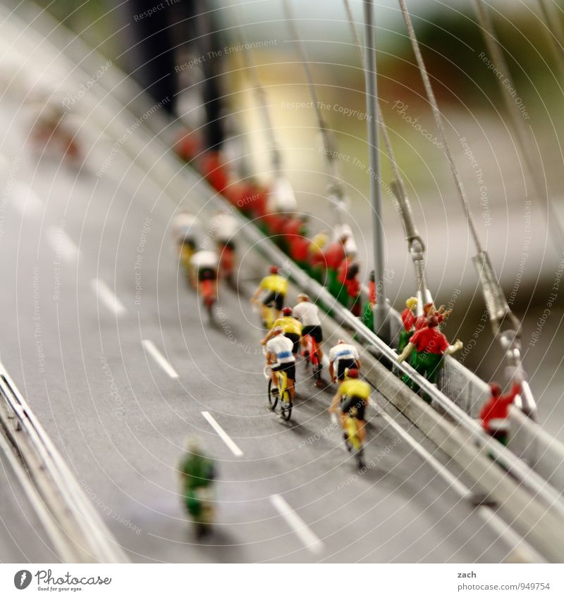 Human being Youth (Young adults) Man Young man Adults Street Feminine Lanes & trails Sports Group Masculine Leisure and hobbies Bicycle Bridge Fitness Cycling