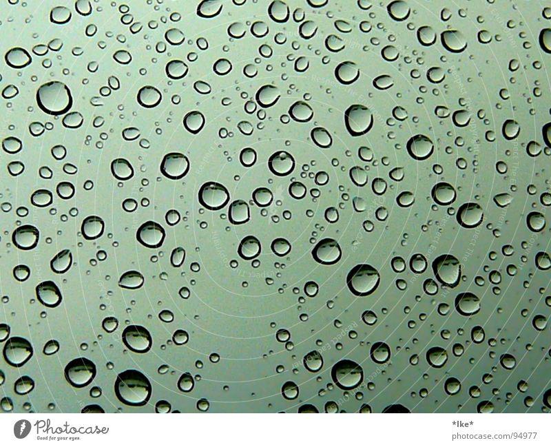 purple rain Window Gale Wet Green Water Rain Drops of water Blue