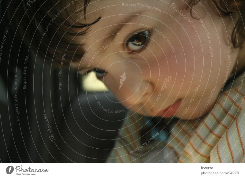 Car shelter Portrait photograph Child Fear Toddler Beautiful Actor eyes Small little nose warning my little princess cheeks snub-nosed attention concentration