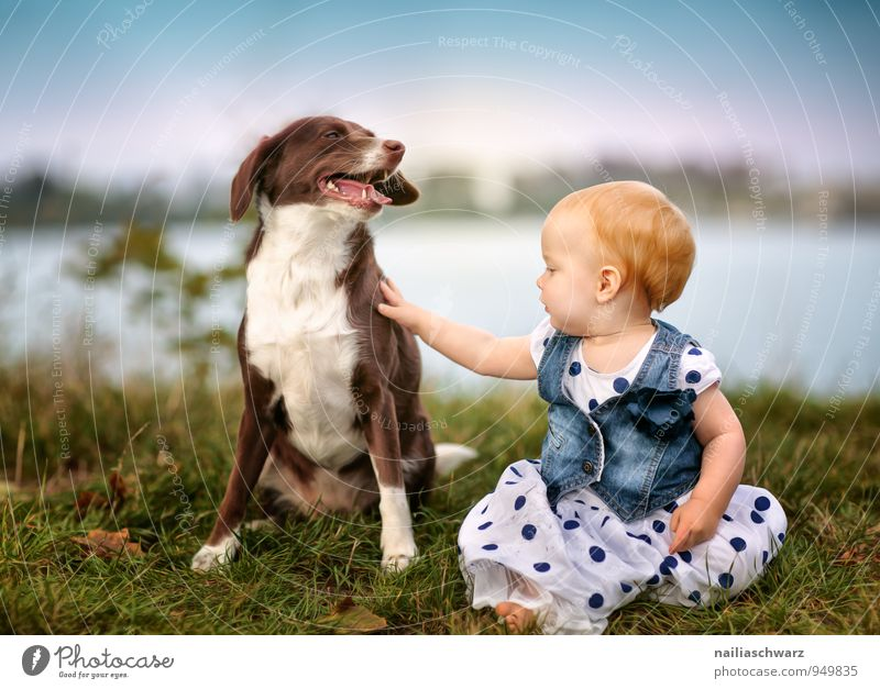 Dog Human being Child Nature Blue Girl Animal Feminine Playing Lake Brown Friendship Together Infancy Happiness Clothing