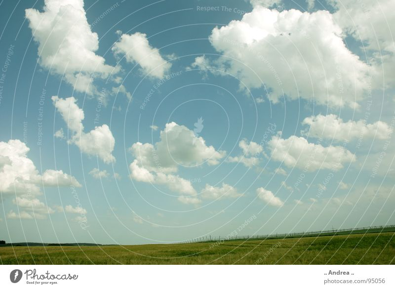 Wide world Landscape Sky Clouds Grass Absorbent cotton Soft Blue Green White Light blue Sky blue Windows XP windows vista wallpapers Colour photo
